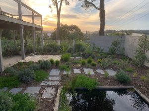Pool conversion with garden bed covering underground water tank in Melbourne